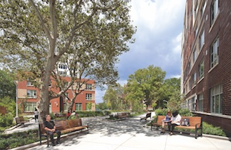 Landscaped green space at Soundview Family and Senior Housing