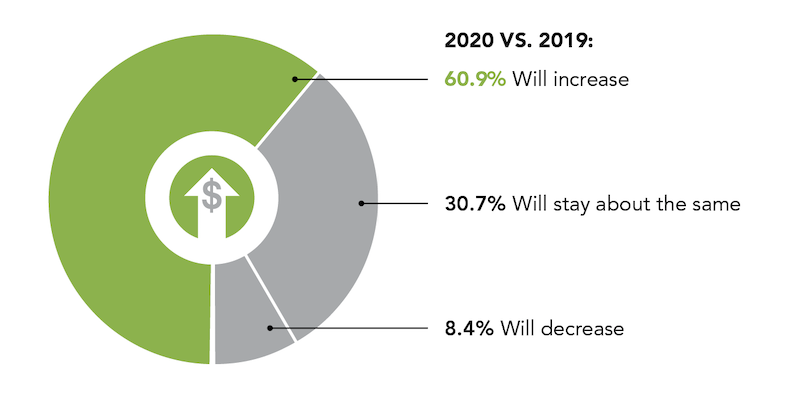 revenue expectations for 2020 revenue relative to 2019