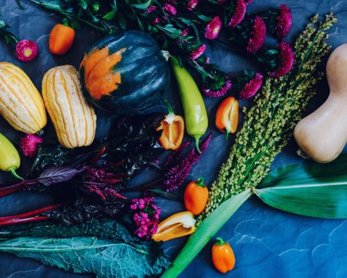 Dark-colored farm vegetables and flowers.