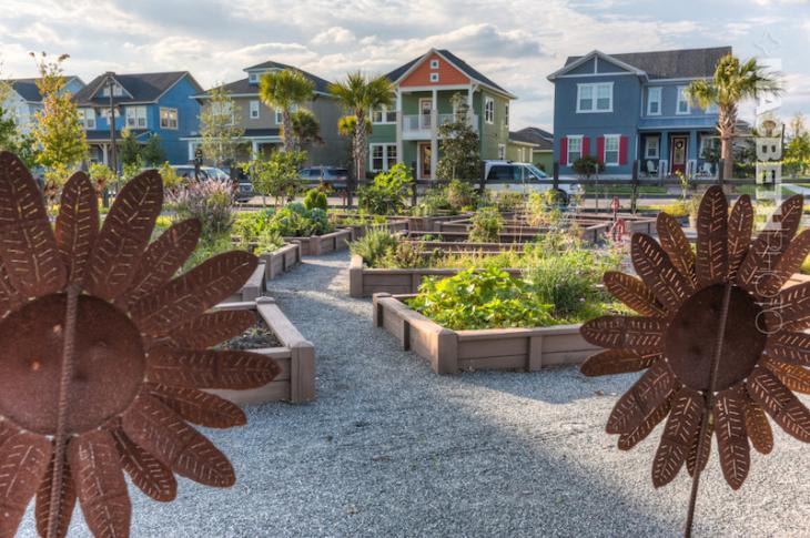 The community garden at the Lake Nona master planned community in Orlando, Florida