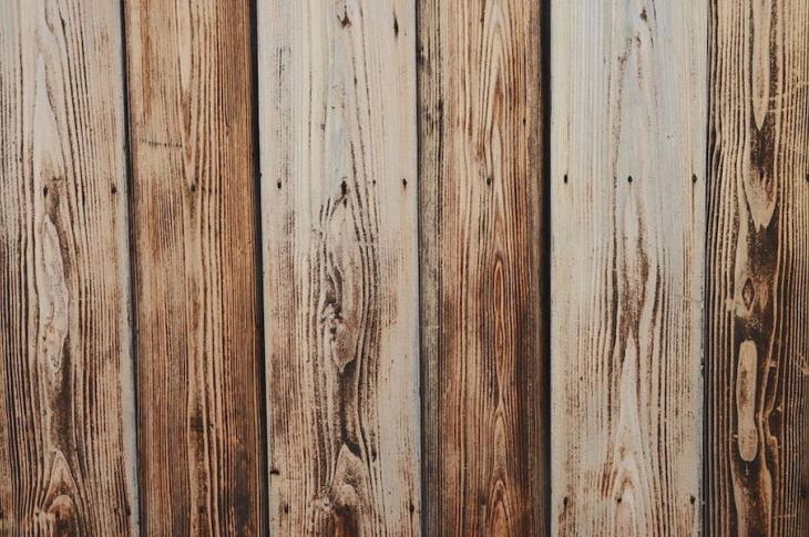 wood affected by moisture