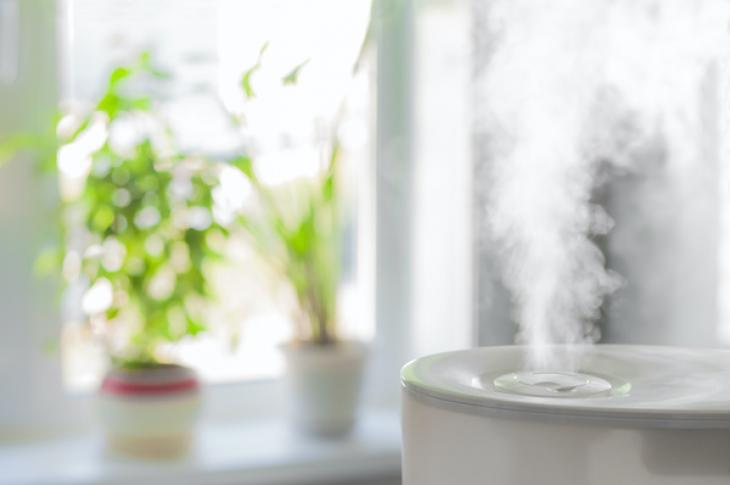 humidifier in home with indoor plants on window sill