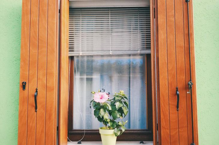 House exterior of window with wooden shutters and potted plant