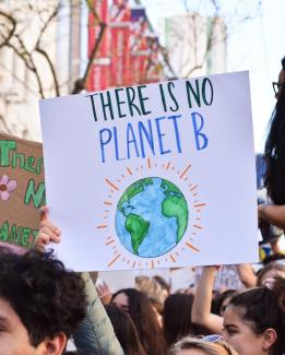 Climate_change_protest_signs