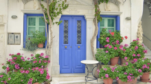 Home with a cheery entry area with potted pelargoniums and a purple door