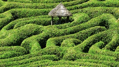 selling green homes can be puzzling, much like finding your way through this green hedge maze