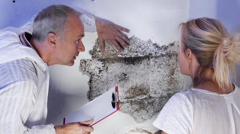 Discovering mold in the wall of a new-construction home