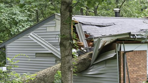 Storm damage from tree falling on a roof